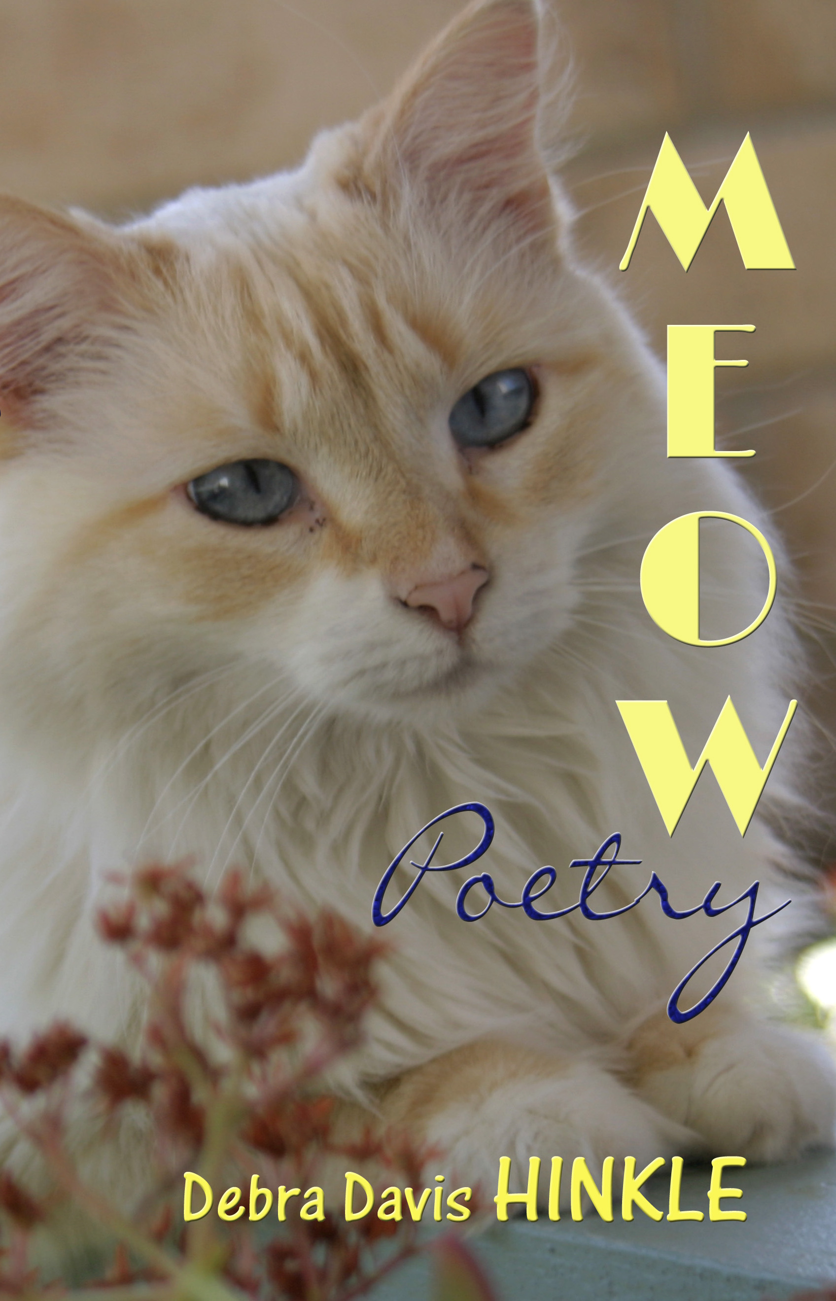 Meow Poetry